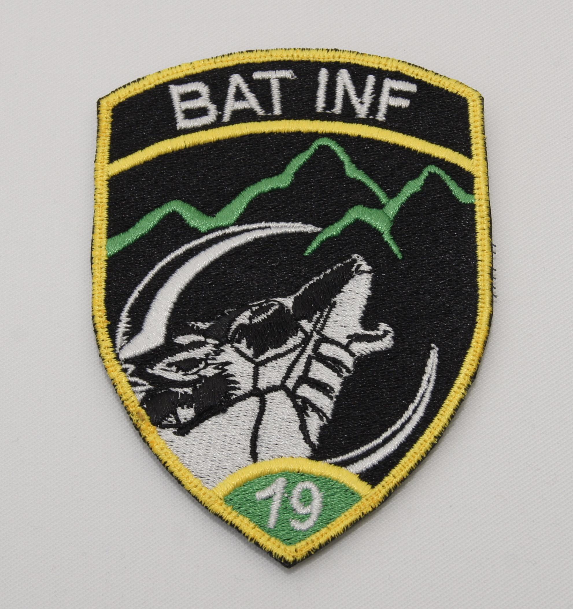 BAT INF 19